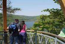 Boomkronenpad Edersee – Tree Top Walk