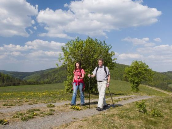 Willingen is een wandelparadijs